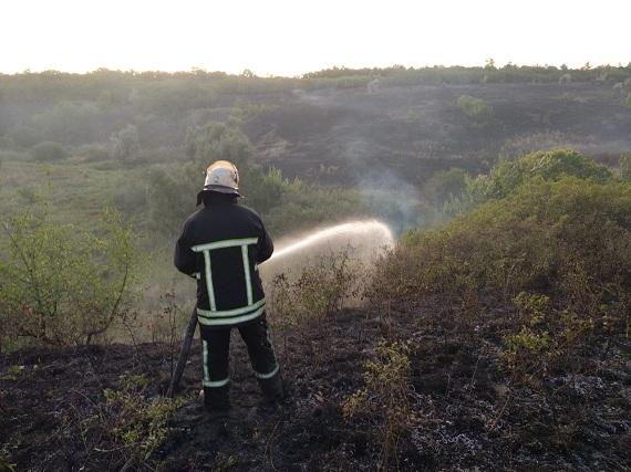 В Олександрії сталася пожежа площею 200 м2 на відкритій місцевості