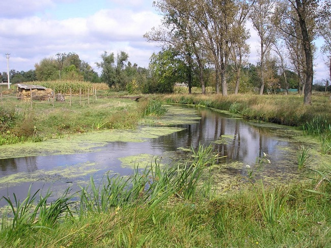 Новопразькій громаді потрібно 20 млн грн на очищення річки Бешка