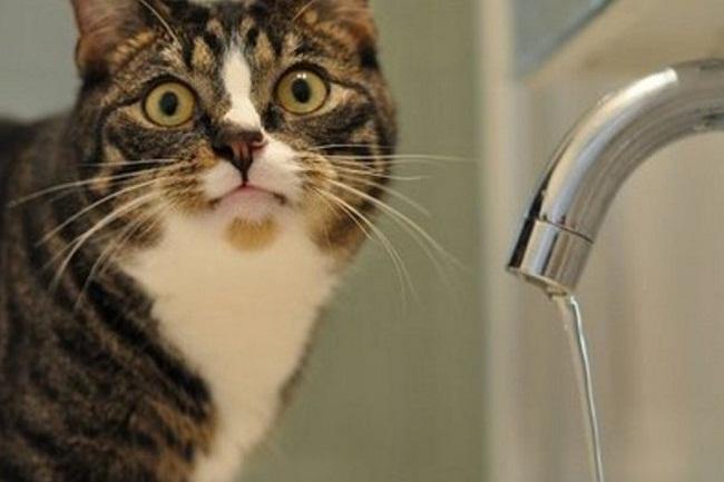 Де і коли не буде води?