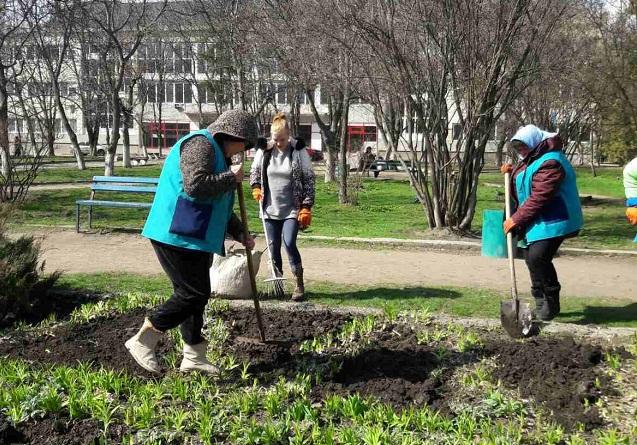 Канни, цинії, чорнобривці: в Олександрії висадили квіти
