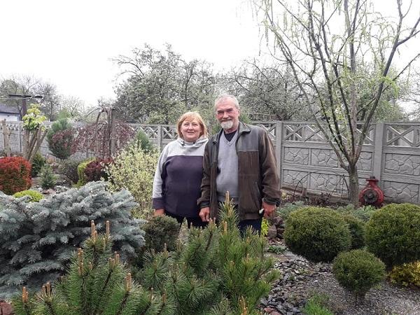 На Олександрійщині подружжя перетворило подвір'я на справжній ботанічний сад