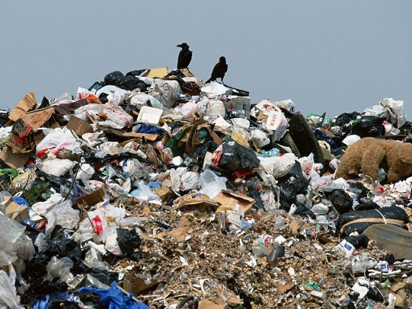 Олександрійське сміттєзвалище потребує нового «господаря»