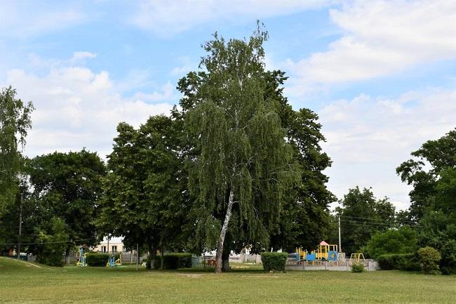 Приютівська ОТГ долучиться до проекту «Активні парки – локації здорової України»