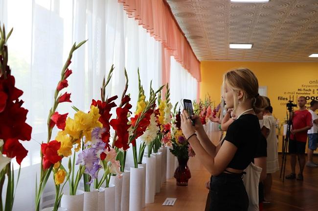 В Олександрії проходить фестиваль гладіолусів