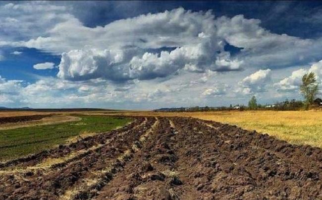 Фермерське господарство захопило цiннi землi