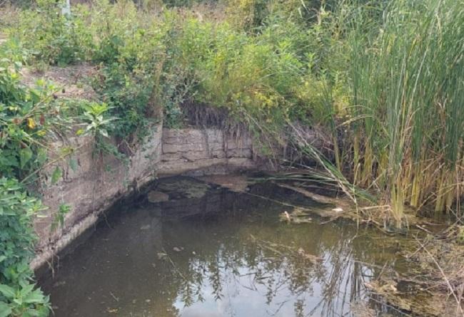 Навіщо у Березівці знижують рівень води у водоймі