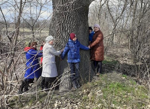 Кількасотлітній дуб Новопразької ОТГ стане об'єктом культурної спадщини