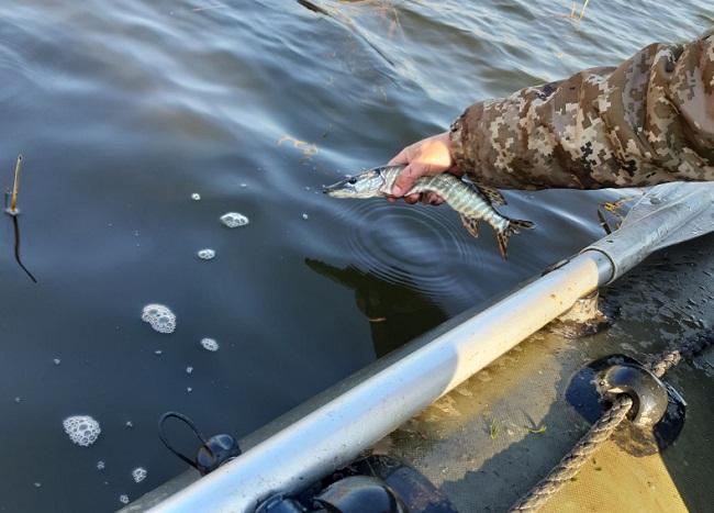 У Приютівській громaді тривaє боротьбa з недобросовісними рибaлкaми