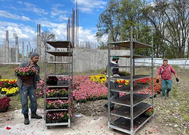 16 тисяч квітів висадять у парку Шевченка