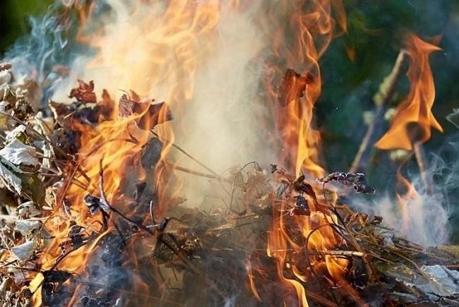 Рейди: паліїв сміття та листя продовжують штрафувати